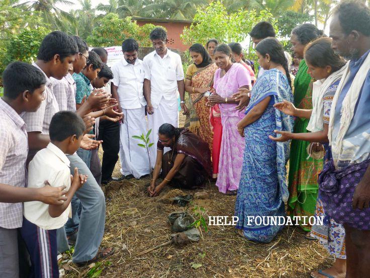 Our Mangrove afforestation programme inaugurated by the Mayyanad Grama Panchayat President Smt. Sheela Kumari