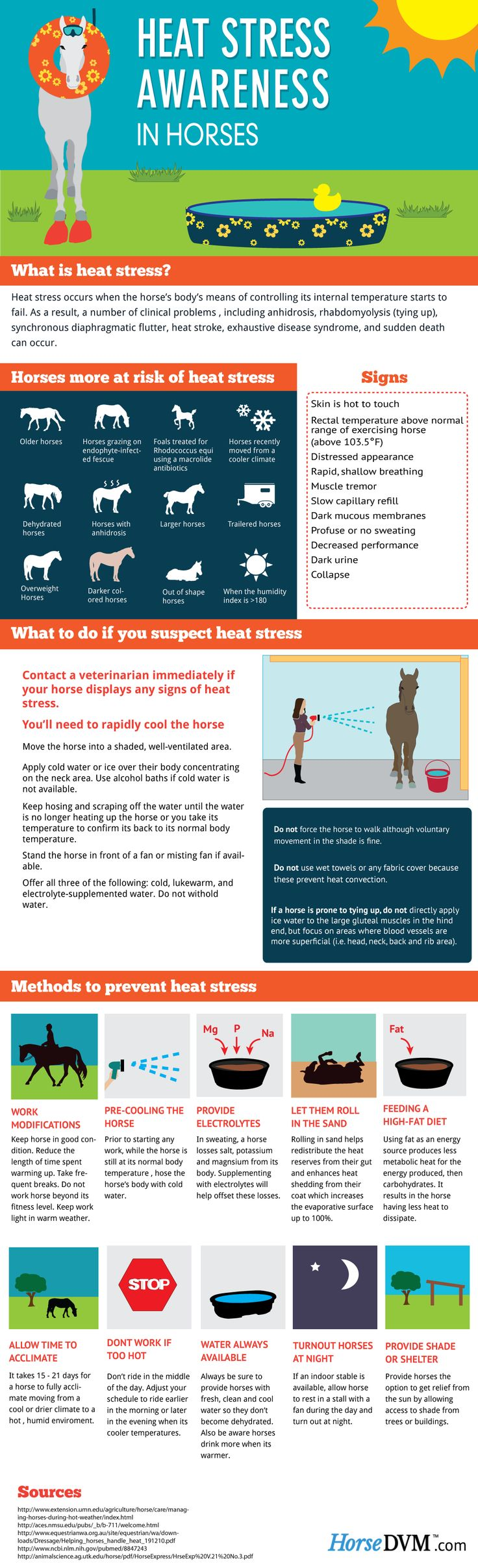 Heat Stress Awareness in Horses by HorseDVM- Visit us at www.agvantagefarm.com for all your horse feed and supply needs!