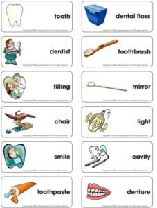 Dental health-Word flash game, not a free printable; many more good, theme-related ideas for all areas (movement, sensory, art, circle time, etc.)