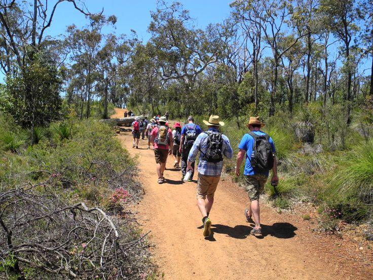 The team from Woodside enjoying the walk - Group Activities on the Bibbulmun Track organised by the Bibbulmun Track Foundation