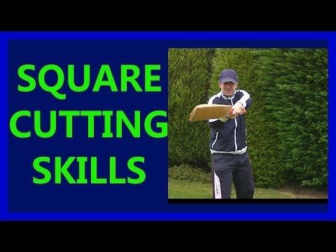 HD Cricket Video How to Play Cricket Square Cut Shots Tutorial Tips #2 Right - YouTube