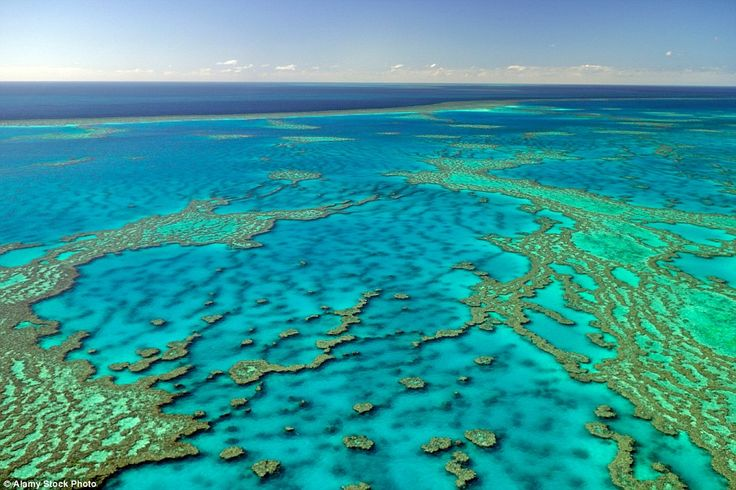 1.One of the Seven Natural Wonders of the World, the Great Barrier Reef features highly o...