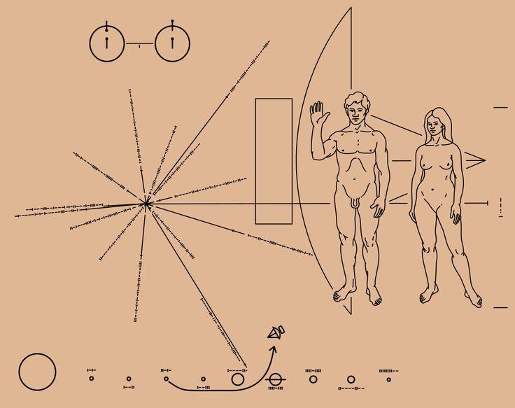 Pioneer plaque - Wikipedia