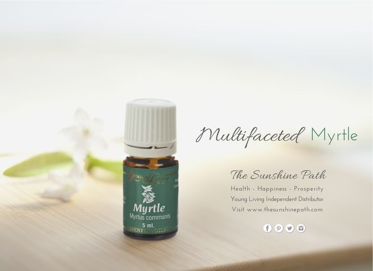 Myrtle essential oil - Normalizes the functioning of the #thyroid and ovaries - Lowers blood sugar - Helpful in treating malaria - Acts as a mosquito repellant - Kills fungus and mold - Helps mouth ulcers - Heals warts - Useful for hemorrhoids - Useful for face cleansing and acne - Kills #salmonella on fresh fruits and vegetables More details on our FB page. www.thesunshinepath.com for more details. #YoungLiving #EssentialOils #Aromatherapy #Thyroid #Malaria