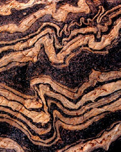 Disharmonic folds in gneiss.  Gneiss is a common and widely distributed type of rock formed by high-grade regional metamorphic processes from pre-existing formations that were originally either igneous or sedimentary rocks.