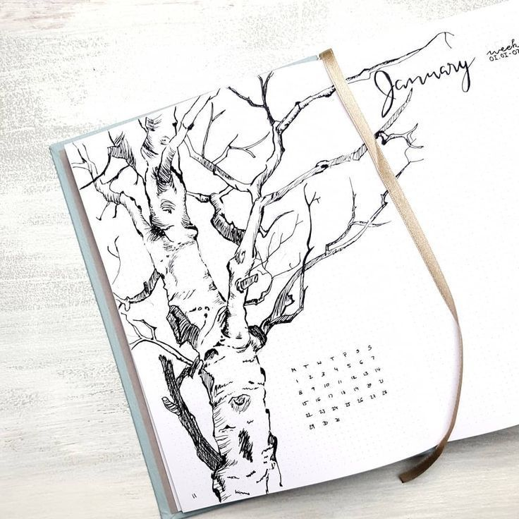 Bullet journal monthly cover page, tree drawing, outdoor drawing, Winter drawing.   @moenchens.planning