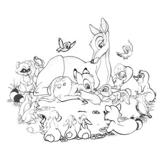 Guarda tutti i disegni da colorare di bambi www for Disegni da colorare walt disney