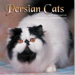Persian Cats 2012 Wall Calendar 12 X 12