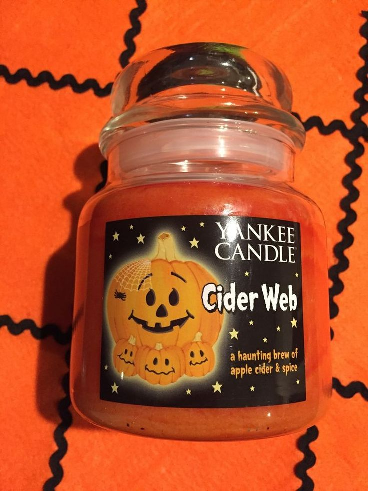 Yankee Candle CIDER WEB Brew Of Apple Cider& Spice fragrant candle 14.5 Oz NWT #YankeeCandle