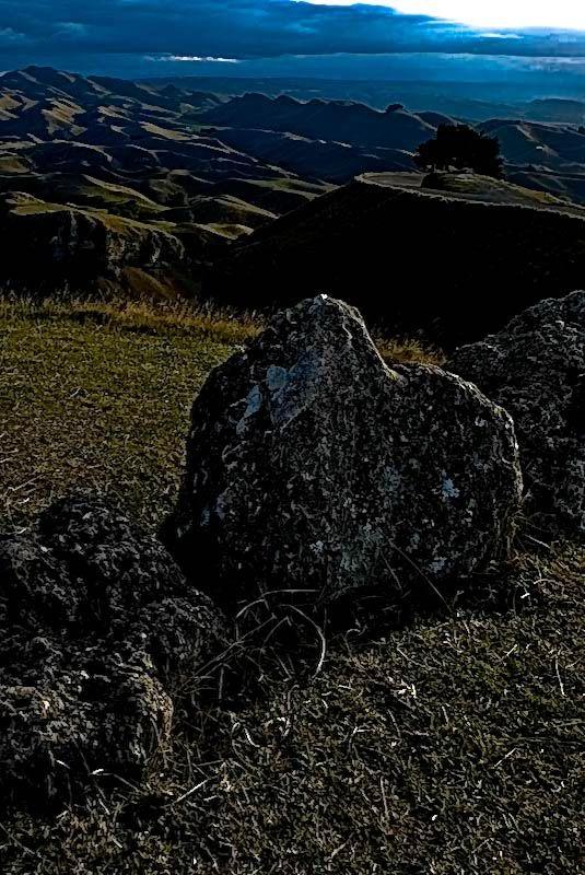 Havelock North, Hawkes Bay, North Island, New Zealand