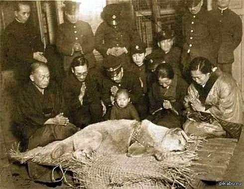 Post Mortem (Ölü Fotoğrafçılığı) 55 Ölü Hatırası