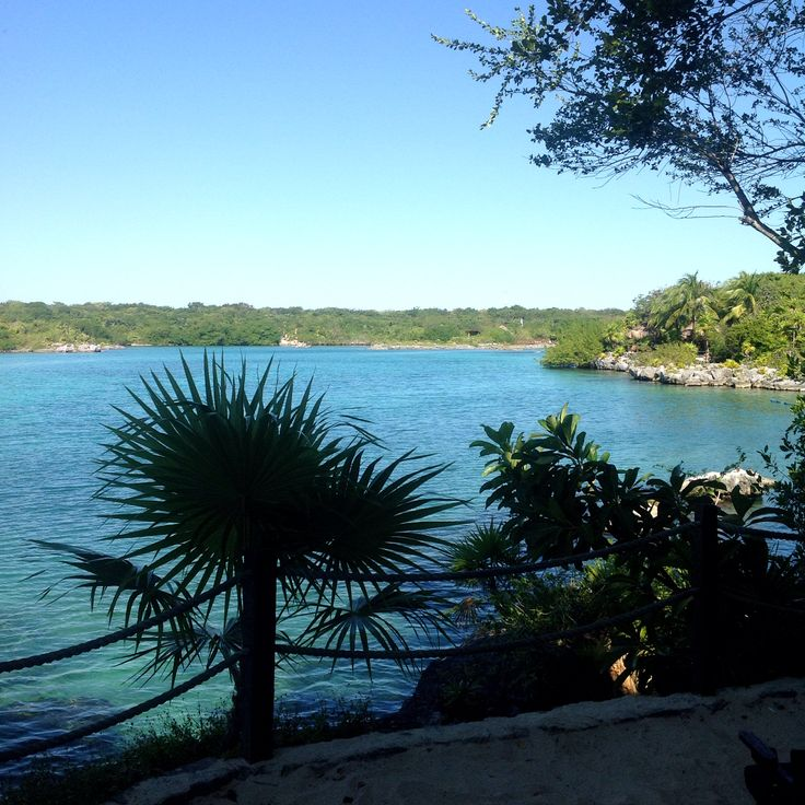 Xel Ha...Mexico  Amazing day out...