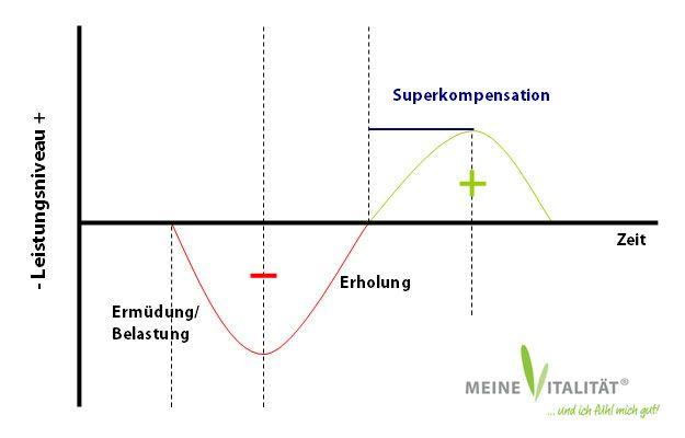 Trainingslehre: Bessere Planung mit dem Prinzip der Superkompensation