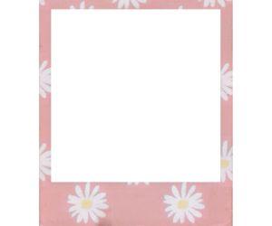 Картинки по запросу polaroid tumblr png
