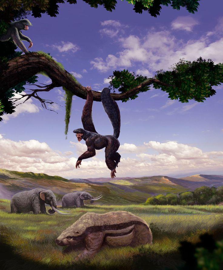 Animais da fauna brasileira, desenvolvida em Adobe Photoshop.   ArtStation - Megafauna , Illustrator Pepi