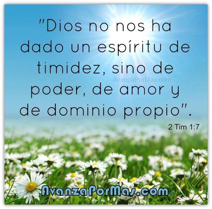 Versiculos Biblicos De Promesas De Dios: Imagenes Y Carteles Con Versiculos De La Biblia Biblicos