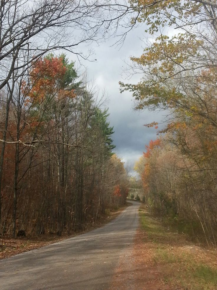 Scenic drive on Beaver Rd., Campbellford.