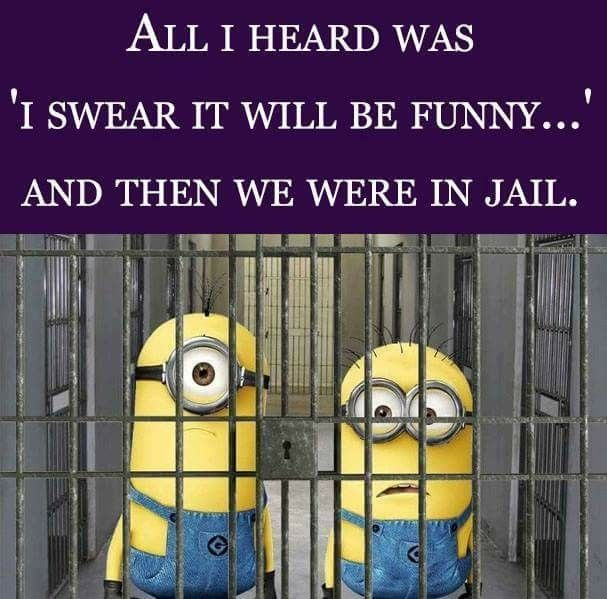 All I heard was 'I swear it will be funny..' and then we were in jail. - minions
