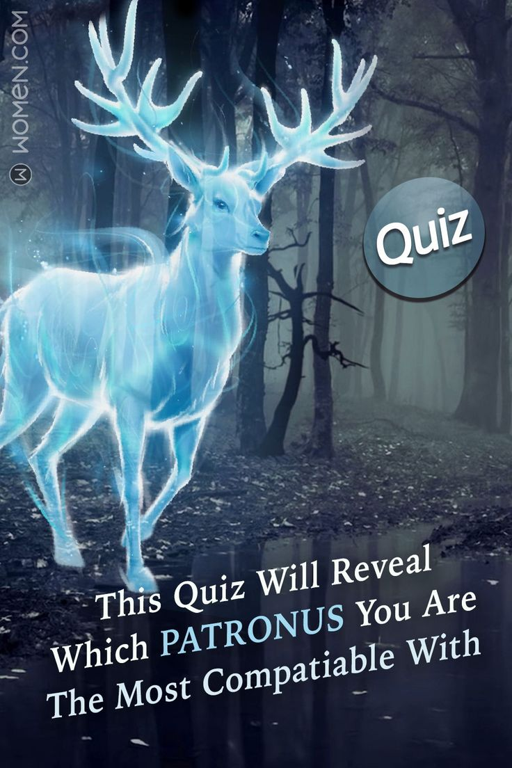 This Quiz Will Reveal Which Patronus You Are The Most