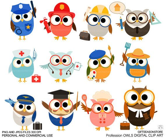 Profession owl clip art for Personal and Commercial use - INSTANT DOWNLOAD