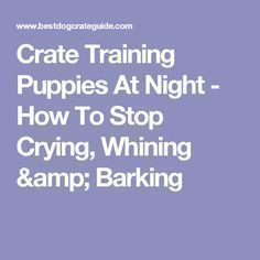 Crate Training Puppies At Night - How To Stop Crying, Whining & Barking #puppytrainingcrateatnight