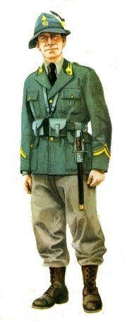 Regio Esercito - Uniformi della Regia Guardia di Finanza, pin by Paolo Marzioli