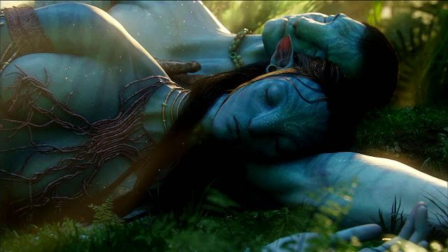 Free Hd Movie Download Point Avatar 2009 Free Hd Movie: Avatar 720p Bluray Torrent
