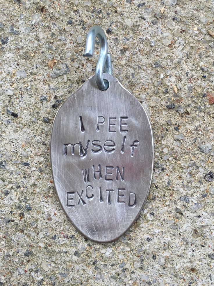 "Doesn't everyone? Wait, they don't? How about this vintage teaspoon upcycled into a dog tag to explain your pup's puddles? Kind of like a ""vanity plate"" for your dog! ~The item pictured is a sample. W"
