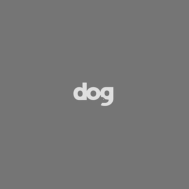 Logo Inspiration.  Follow for daily logo design inspiration.  If you are the designer, comment for credit.  ___________________  #logo #logos #smallbusiness #logoinspirations #logoinspiration #brandidentity #graphicdesign #creative #startupbusiness #creativeagency #designstudio #graphics #graphicdesign #logomark #designer #logodesigner #logotype #business #startup #branding #studio #dogs #negativespace #logodesigners #instadaily #dog
