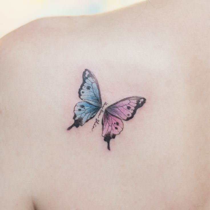 watercolor tattoo butterfly - 736×736