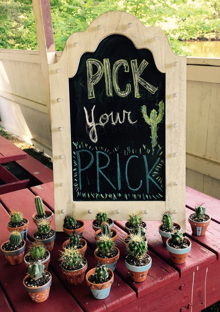 Baby Cacti favors! Cactus, prick, Bachelorette Weekend, succulents, boho Party, …