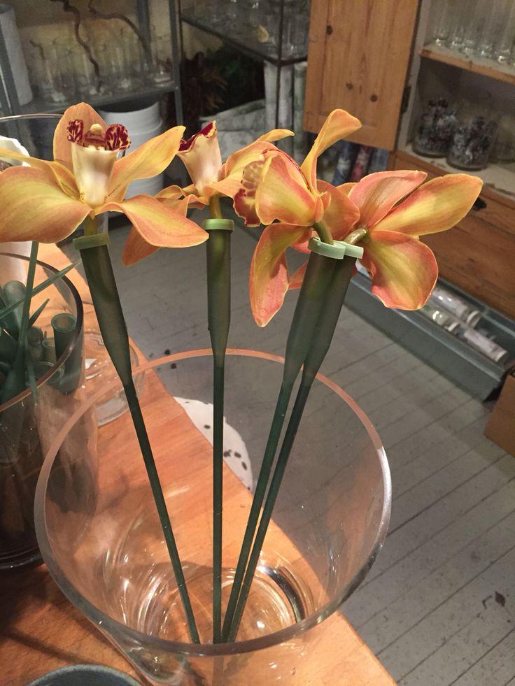 Blomster m propper