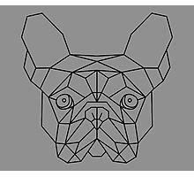 les 25 meilleures id es de la cat gorie origami chien sur pinterest art pliage papier cat. Black Bedroom Furniture Sets. Home Design Ideas