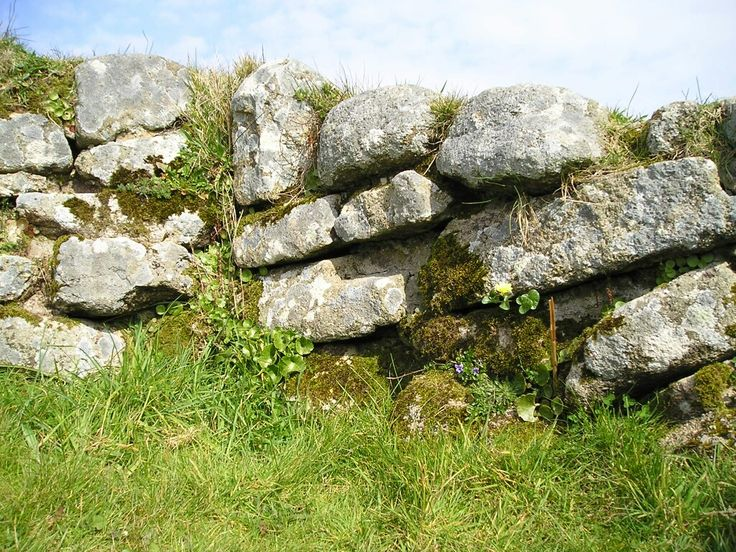 Cornish wall, Chysauster.