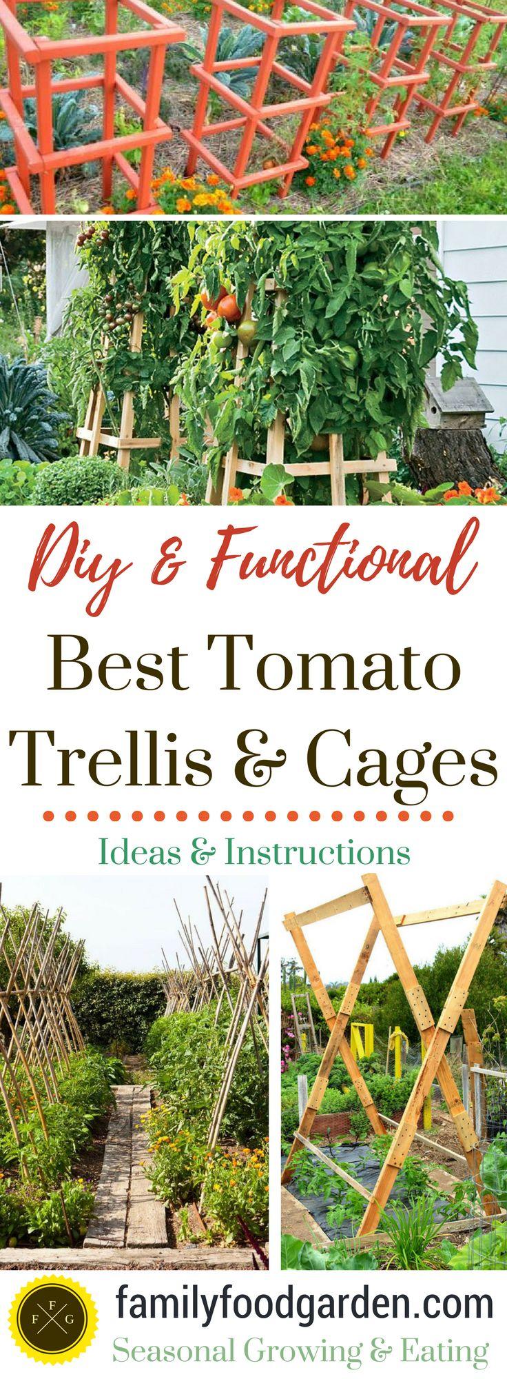 Best DIY tomato trellis & cages