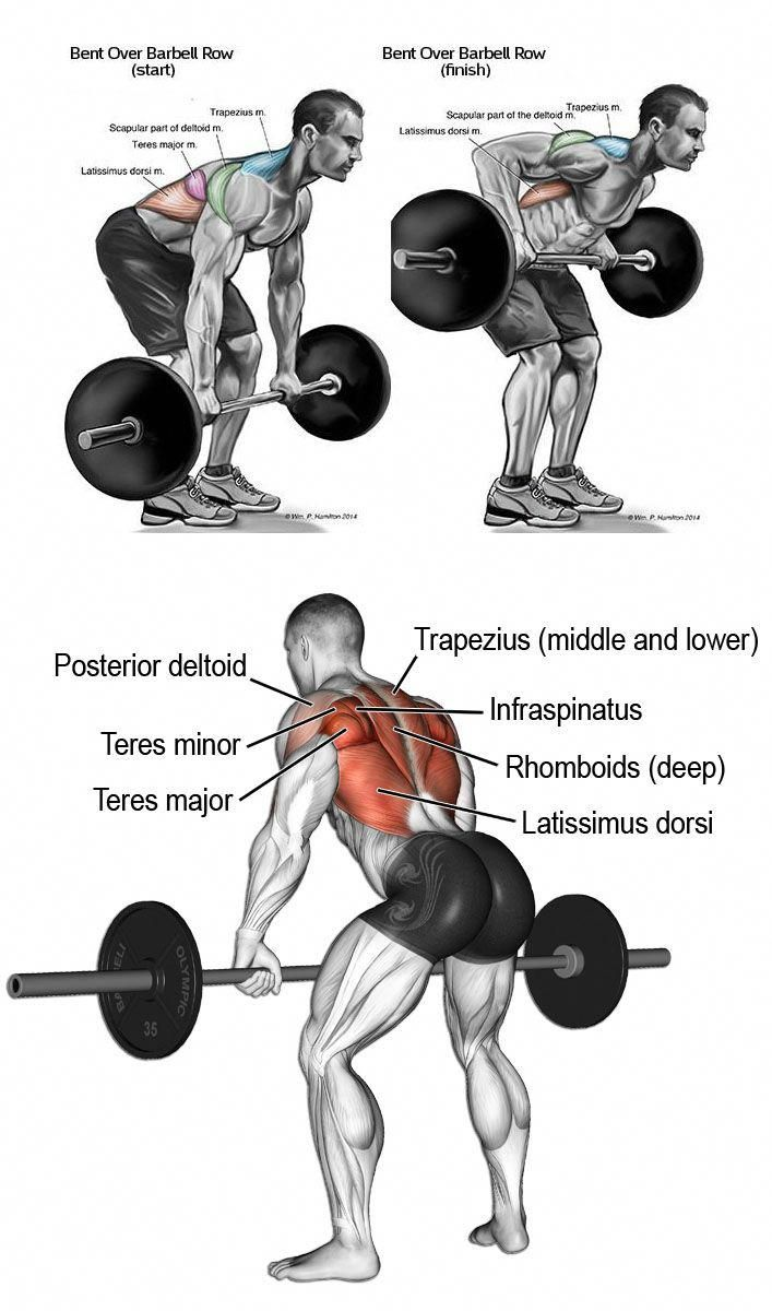 Help For Mens Fitness 817 Mensfitness Men S Fitness And Weight