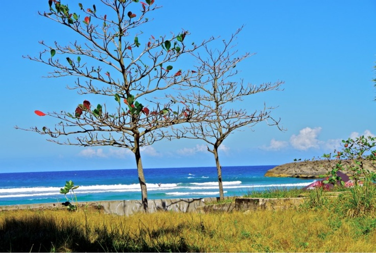A great spot in PR #spots #surfspot #puertorico #surfing #surf #pawa #pawasurf #lifestyle #caribbean #surftrip