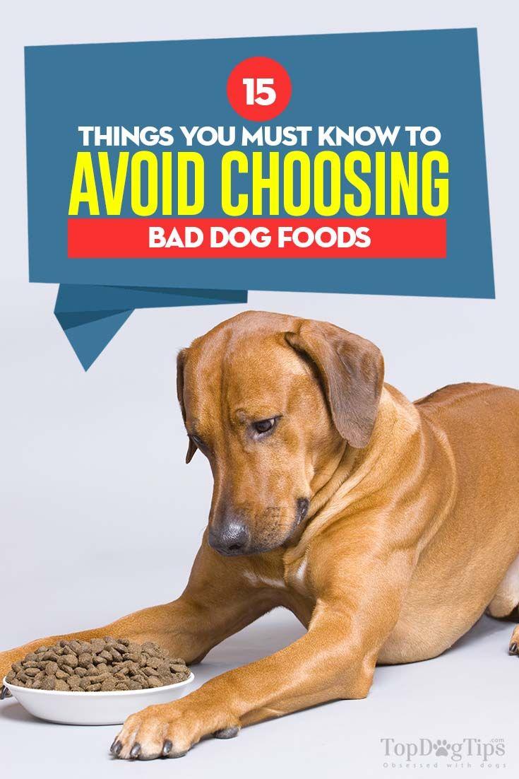 15 Ways To Avoid Bad Dog Foods Dog Food Recipes Dog Food Recall