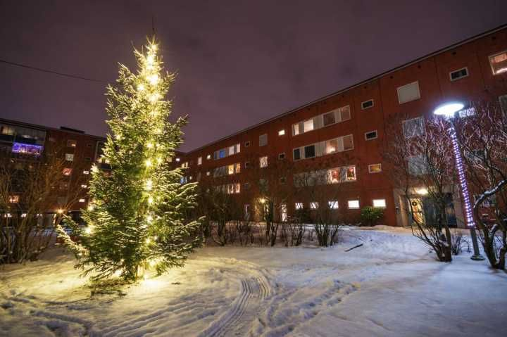 Husby Christmas Trees — at Husby, Stockholm, Sweden