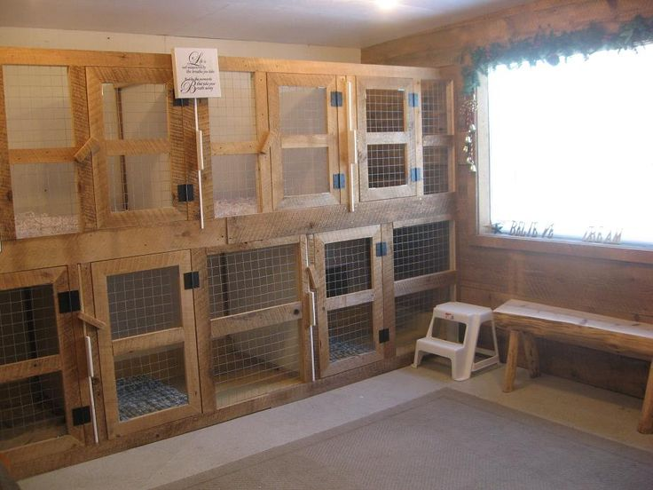 180 best my dream business puppy daycare hotel images on for Dog breeding kennel design