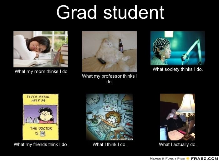 graduate school memes | Grad student... - Meme Generator What i do
