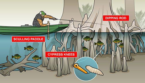 Bluegill Fishing: How to Catch Prespawn Slabs   Field & Stream