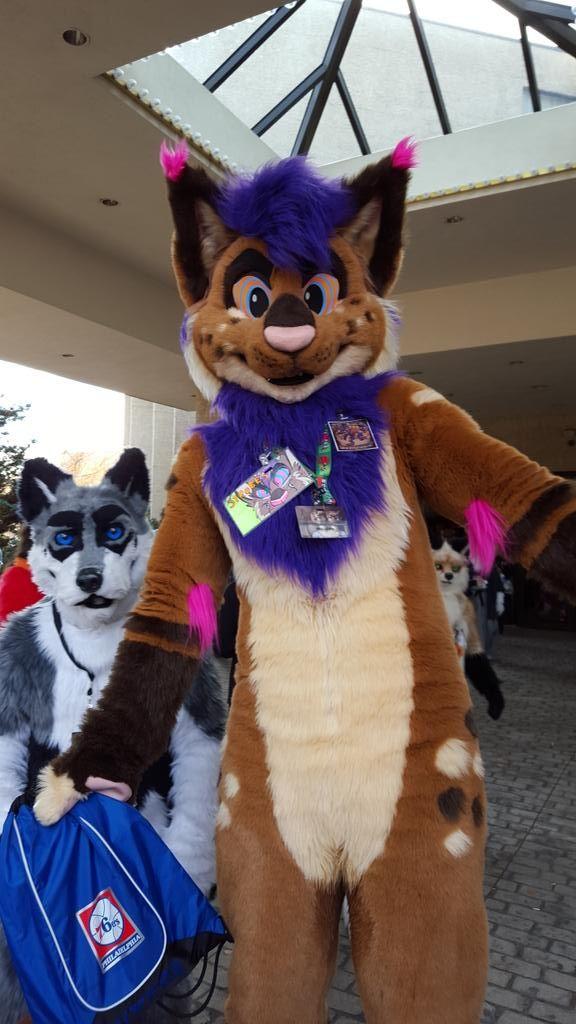 27 best images about Cute Fursuits on Pinterest | Coyotes ...