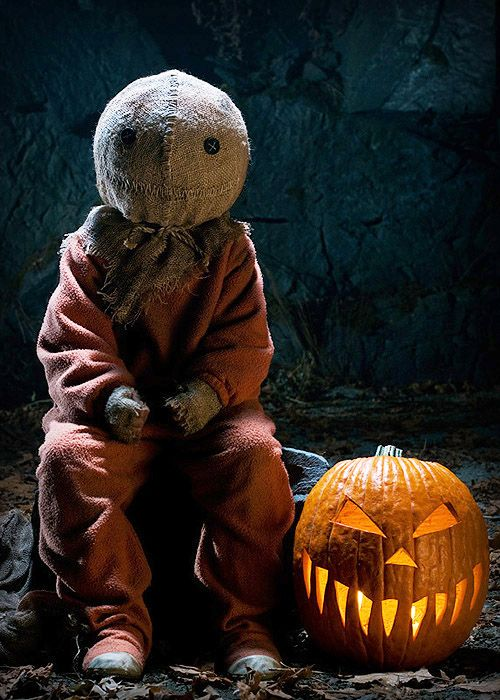112 best Sam trick R treat images on Pinterest | Halloween ...