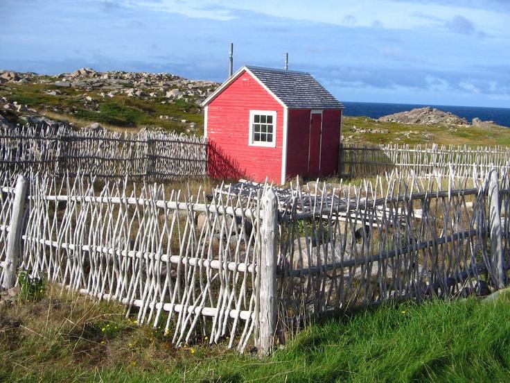 Shack with animal pen, Cape Bonavista, Newfoundland, Canada