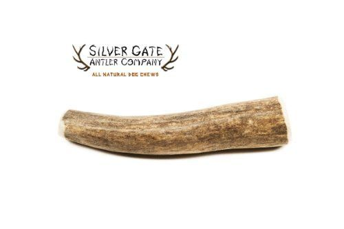 Silver Gate Antlers Deer Antler Dog Chews  SMALL 34 All Natural Premium Antler Dog Chew  Free Shipping  Made in USA Holistic  Hypoallergenic Treat Toy  Perfect for Small Dogs *** To view further for this item, visit the image link.