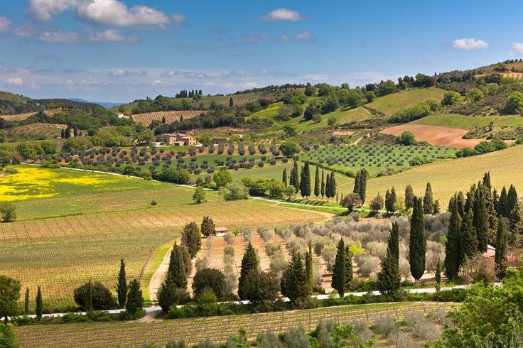 Chianti Authentic Experience with Two Wine Tastings and Two Charming Villages with Tourboks.