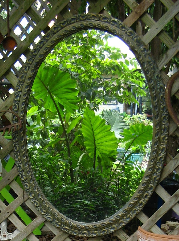 Roselee's Mirrors in the garden ... Texas Gardening Forum, GardenWeb