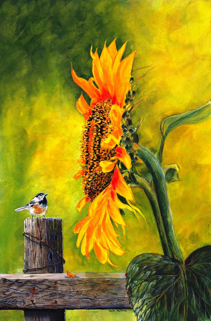 'Not Ready Yet'... Watercolor by Beth McGale.