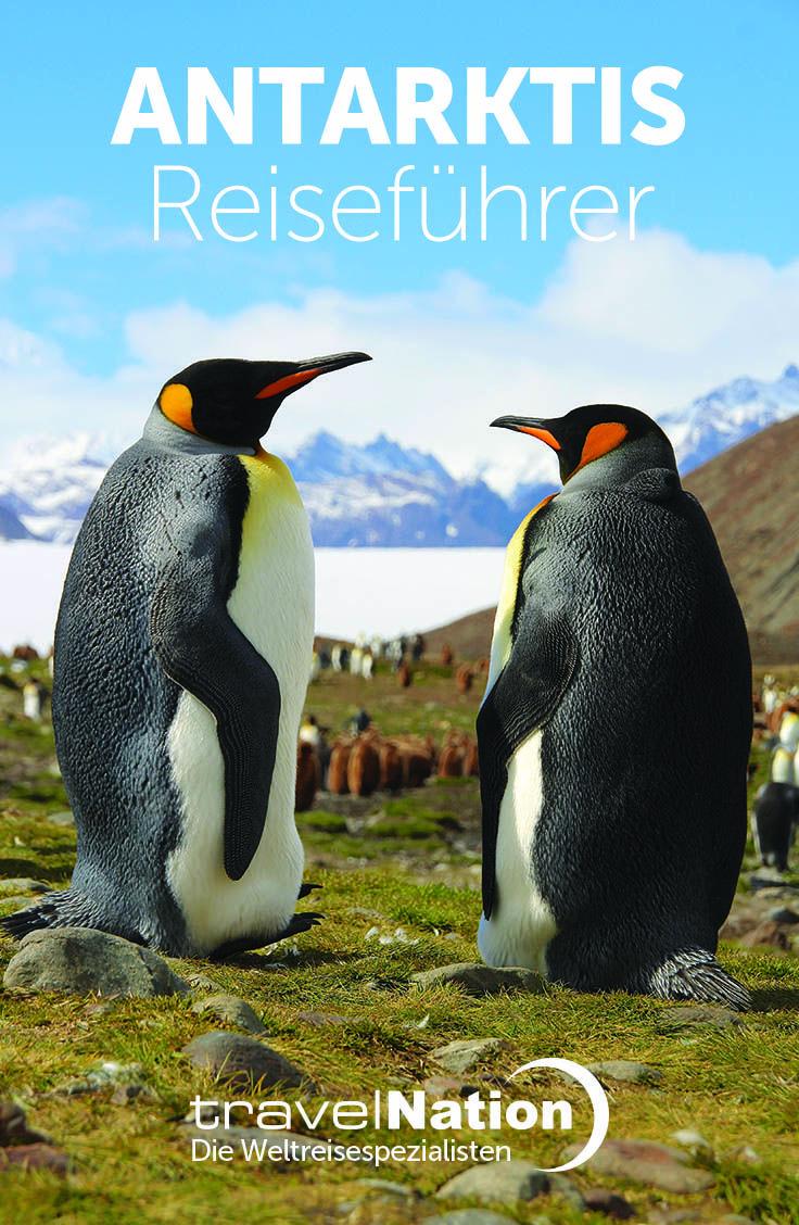 Setzen Sie die Segel in Ushuaia (Argentinien) und fahren Sie auf einem kleinen Schiff Richtung Süden in die Antarktis, dem weißen Kontinent, oder machen Sie einen Umweg Richtung Osten über die Falklandinseln, der Heimat von englischen Gärten und riesigen Albatrossen. Wir können Ihre Weltreise für Sie organisieren. Wir sind Reisespezialisten hier bei Travel Nation. Schauen Sie sich unseren Reiseführer Antarktis an.